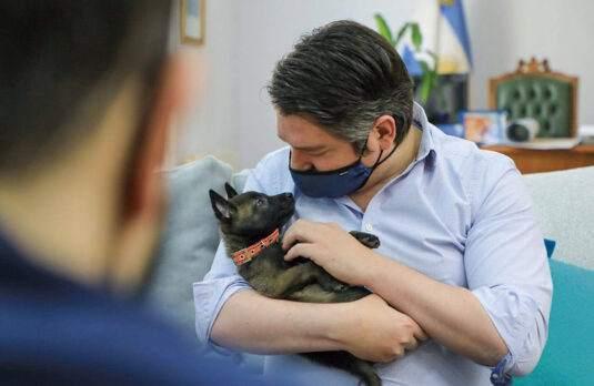División de Canes de Rescate